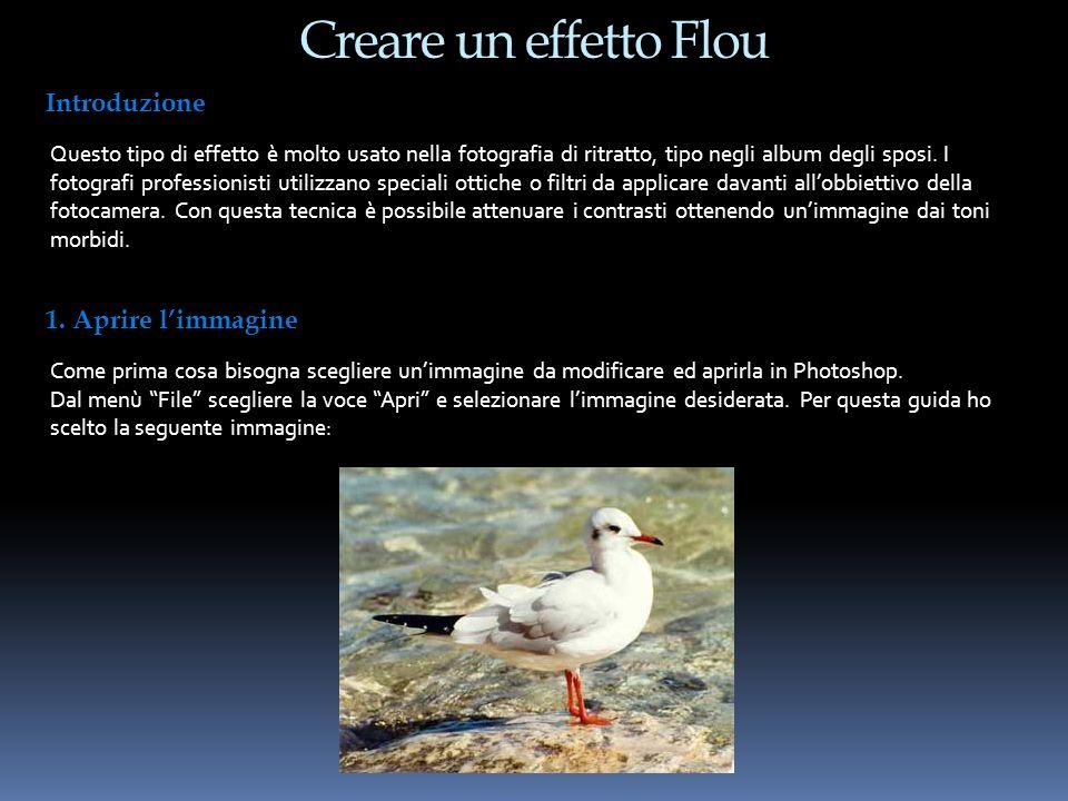 Creare un effetto Flou Introduzione 1. Aprire l'immagine