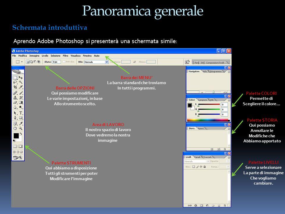 Panoramica generale Schermata introduttiva