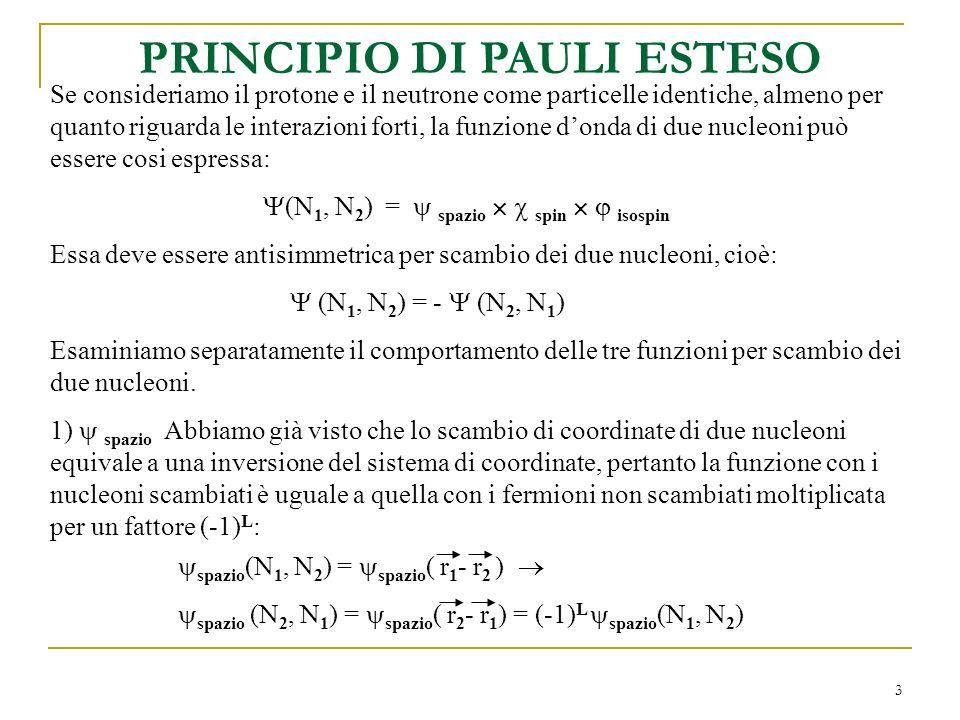 PRINCIPIO DI PAULI ESTESO
