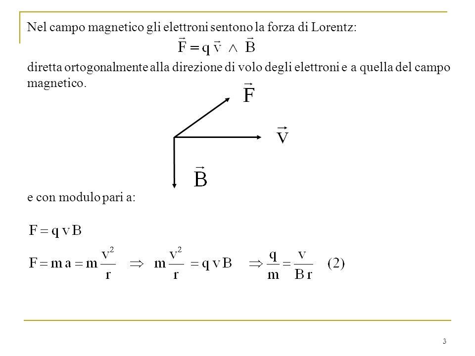 Nel campo magnetico gli elettroni sentono la forza di Lorentz: