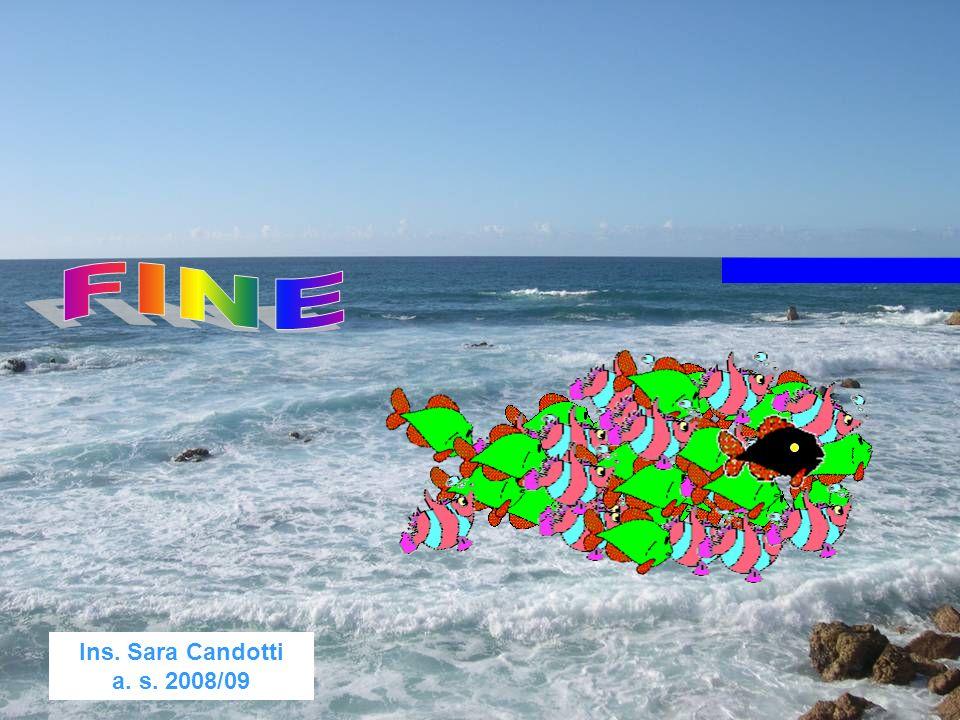 FINE Ins. Sara Candotti a. s. 2008/09