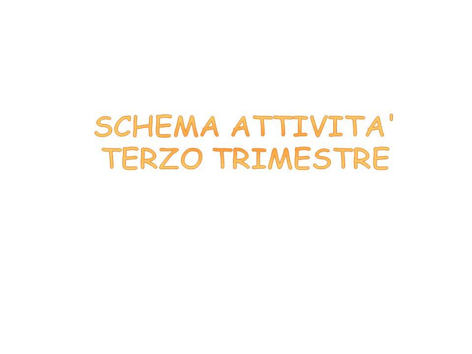 SCHEMA ATTIVITA TERZO TRIMESTRE