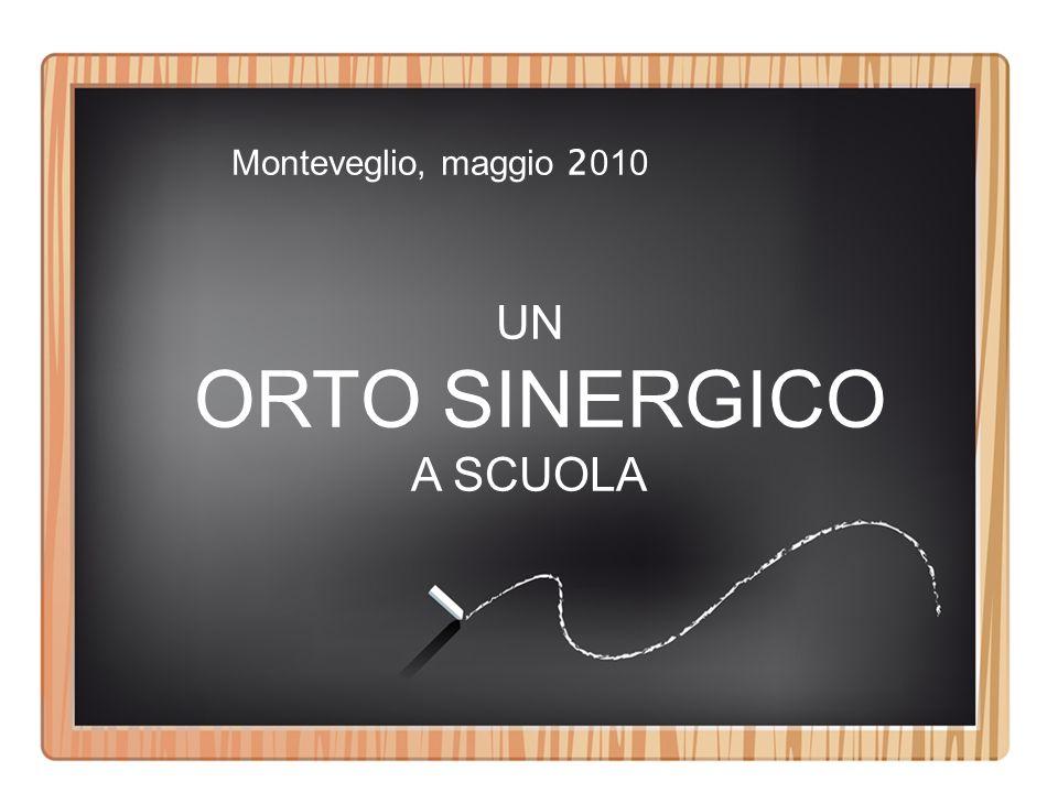 Monteveglio, maggio 2010 UN ORTO SINERGICO A SCUOLA
