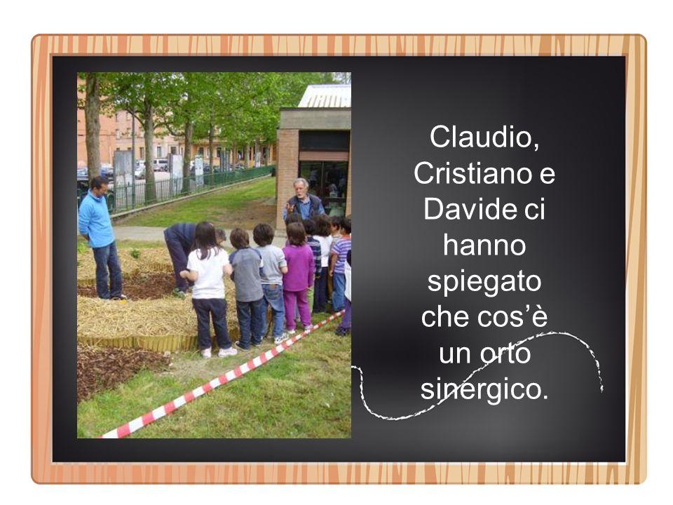 Claudio, Cristiano e Davide ci hanno spiegato che cos'è un orto sinergico.