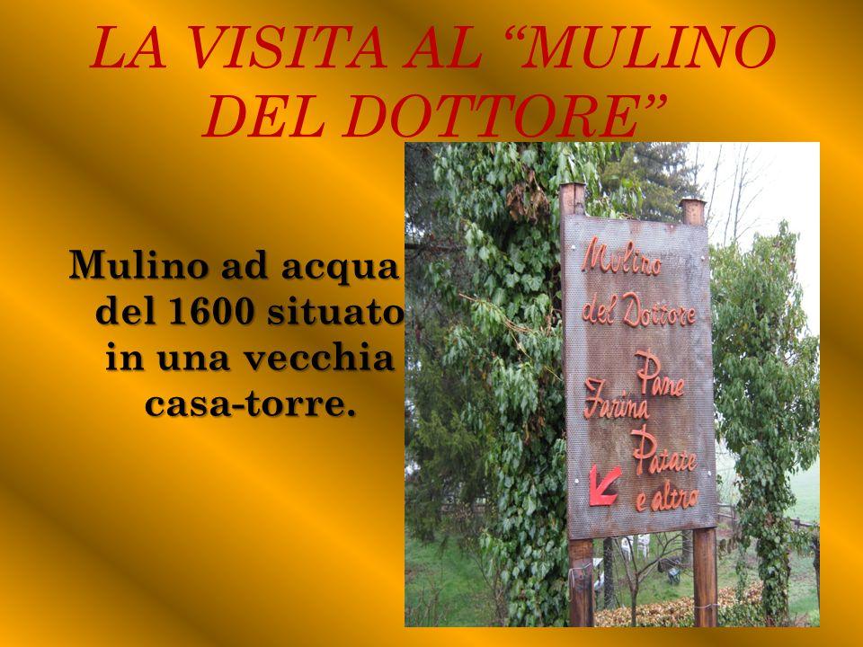 LA VISITA AL MULINO DEL DOTTORE