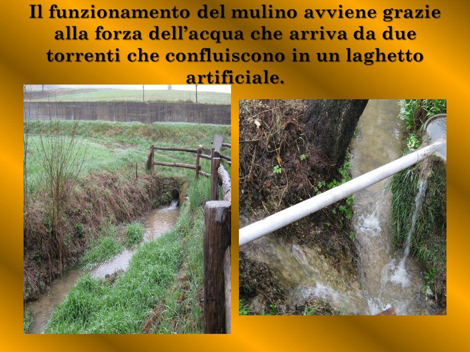 Il funzionamento del mulino avviene grazie alla forza dell'acqua che arriva da due torrenti che confluiscono in un laghetto artificiale.