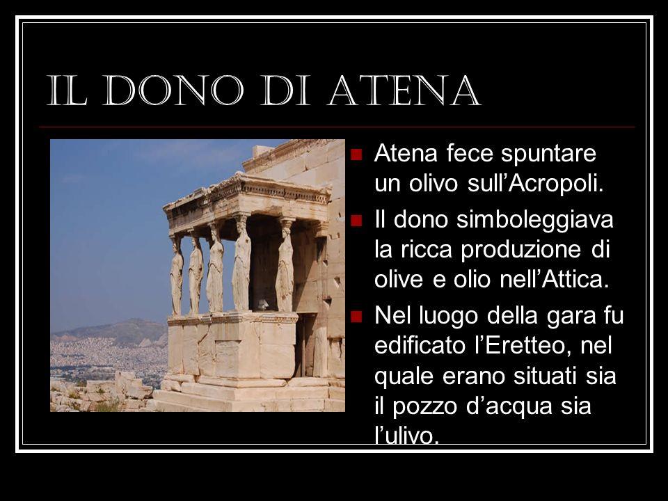 IL DONO DI ATENA Atena fece spuntare un olivo sull'Acropoli.
