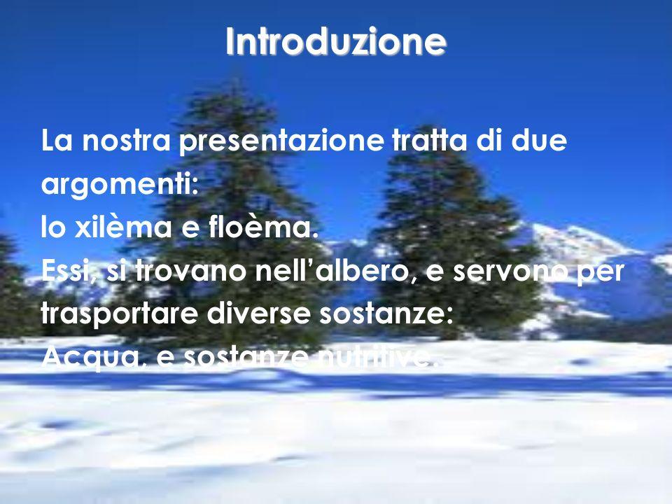 Introduzione La nostra presentazione tratta di due argomenti: