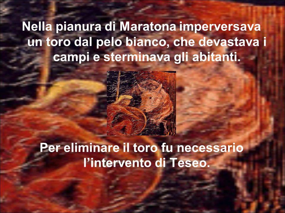 Per eliminare il toro fu necessario l'intervento di Teseo.
