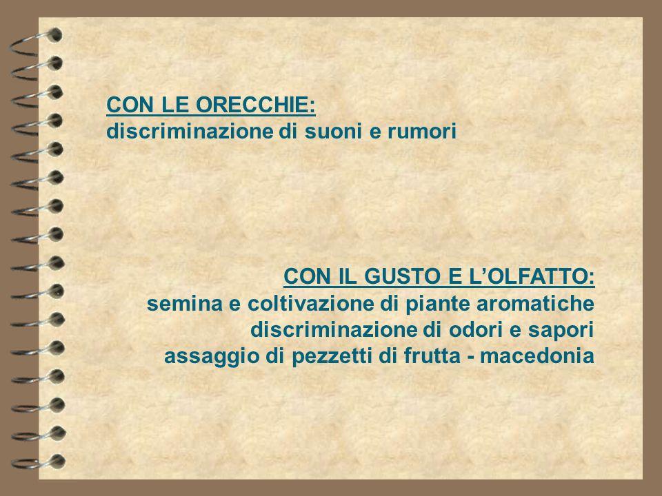 CON LE ORECCHIE:discriminazione di suoni e rumori. CON IL GUSTO E L'OLFATTO: semina e coltivazione di piante aromatiche.
