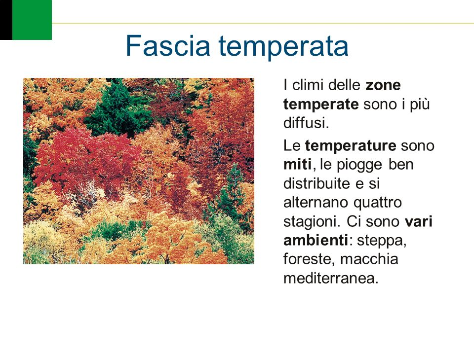 Fascia temperata I climi delle zone temperate sono i più diffusi.