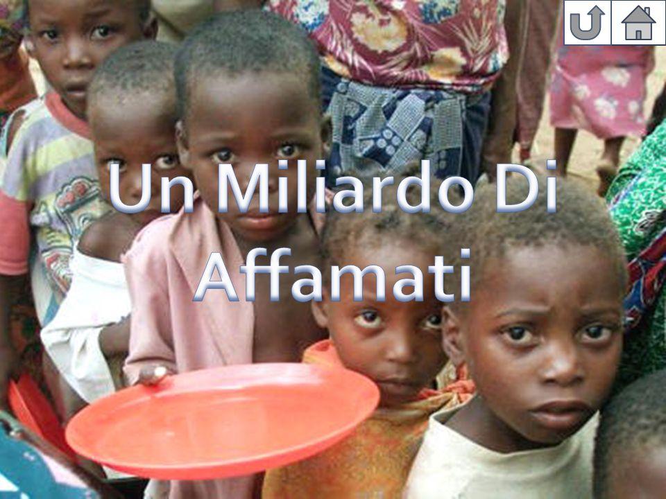 Un Miliardo Di Affamati