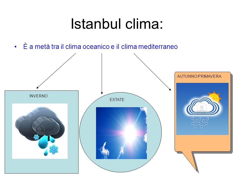 Istanbul clima: È a metà tra il clima oceanico e il clima mediterraneo
