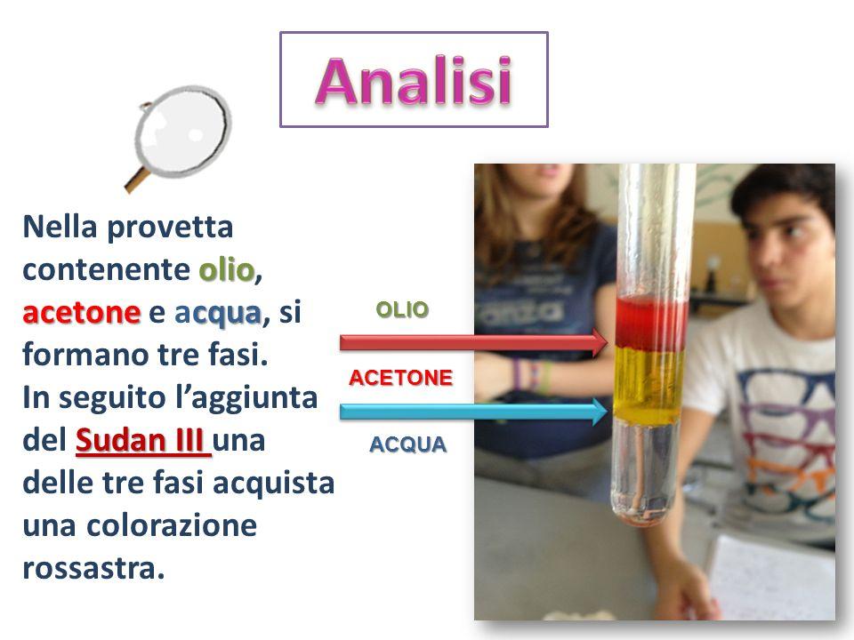AnalisiNella provetta contenente olio, acetone e acqua, si formano tre fasi.