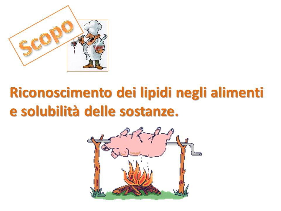 Scopo Riconoscimento dei lipidi negli alimenti e solubilità delle sostanze.