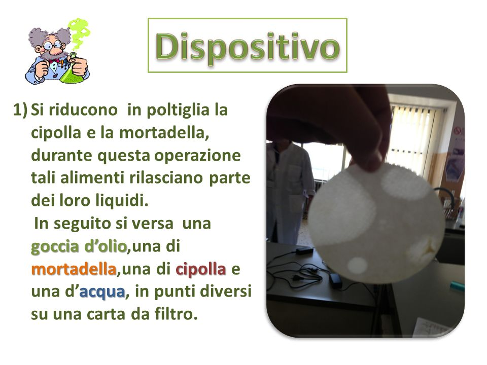 Dispositivo Si riducono in poltiglia la cipolla e la mortadella, durante questa operazione tali alimenti rilasciano parte dei loro liquidi.