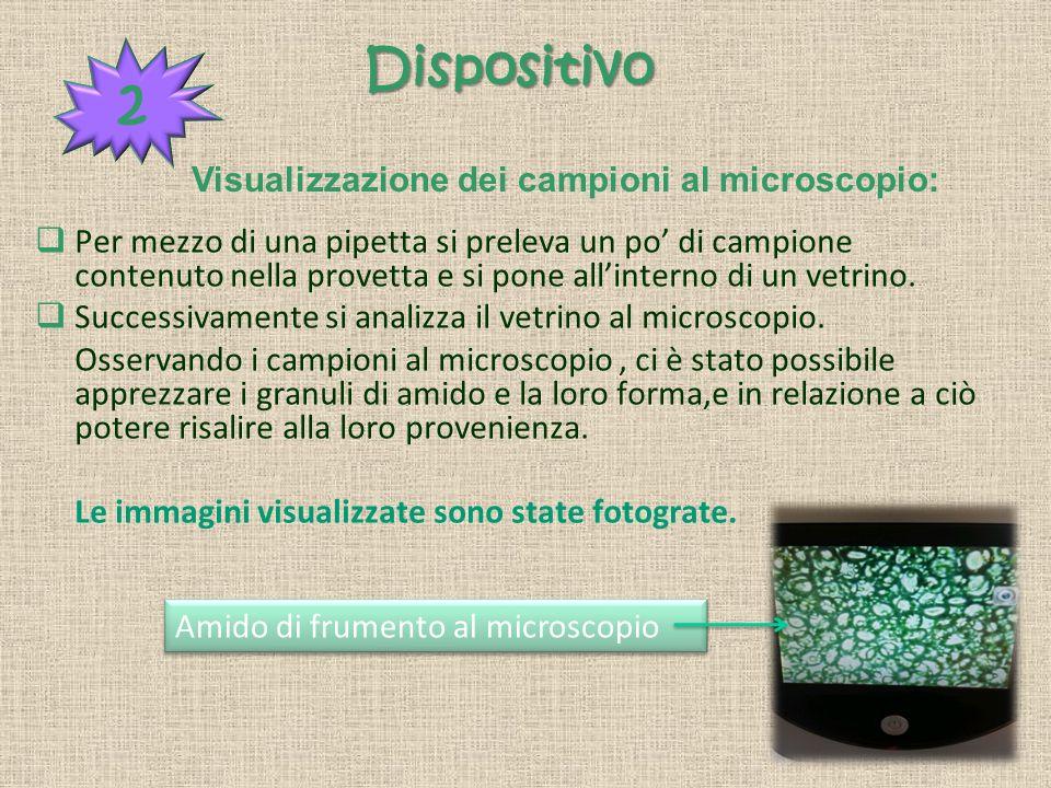 2 Dispositivo Visualizzazione dei campioni al microscopio: