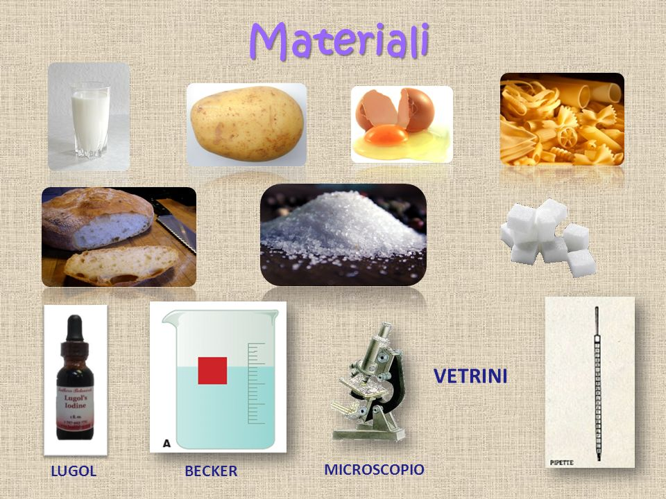 Materiali VETRINI LUGOL BECKER MICROSCOPIO