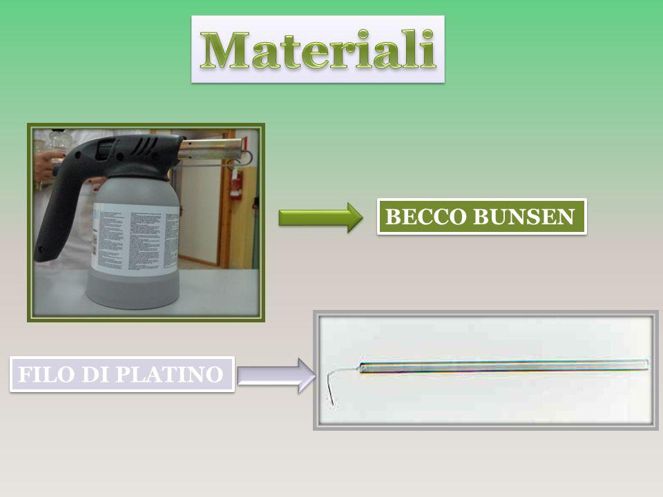 Materiali BECCO BUNSEN FILO DI PLATINO