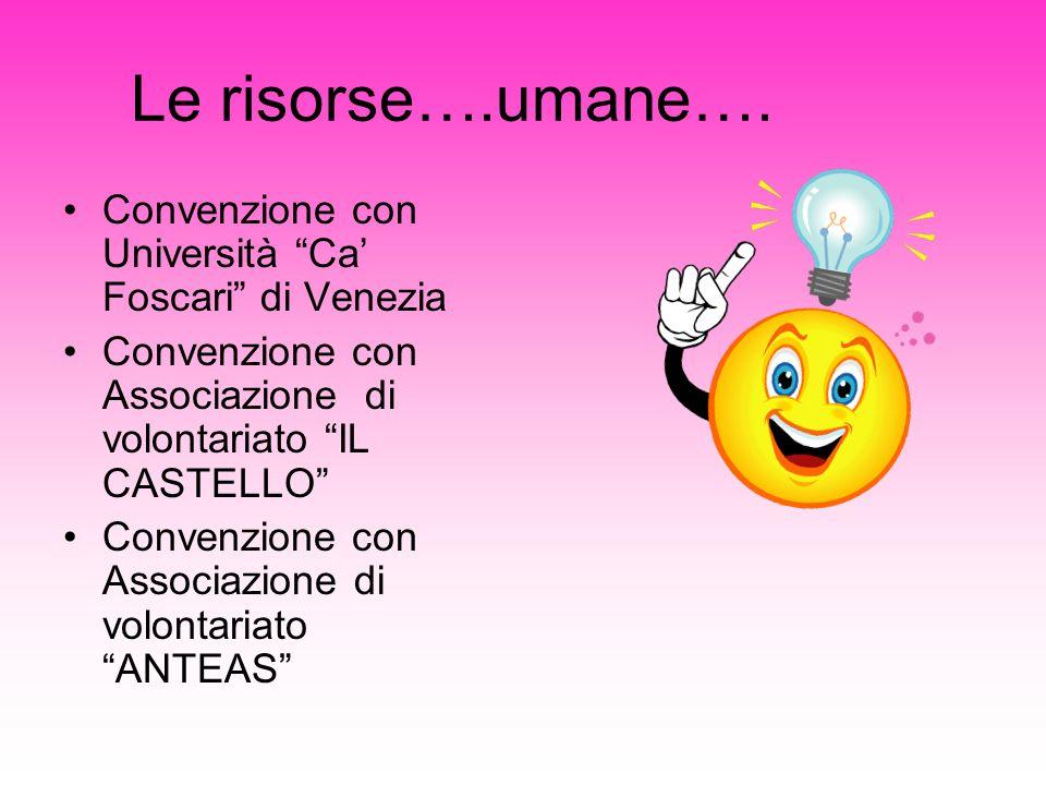 Le risorse….umane…. Convenzione con Università Ca' Foscari di Venezia. Convenzione con Associazione di volontariato IL CASTELLO