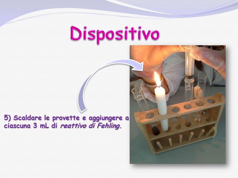 Dispositivo 5) Scaldare le provette e aggiungere a ciascuna 3 mL di reattivo di Fehling.
