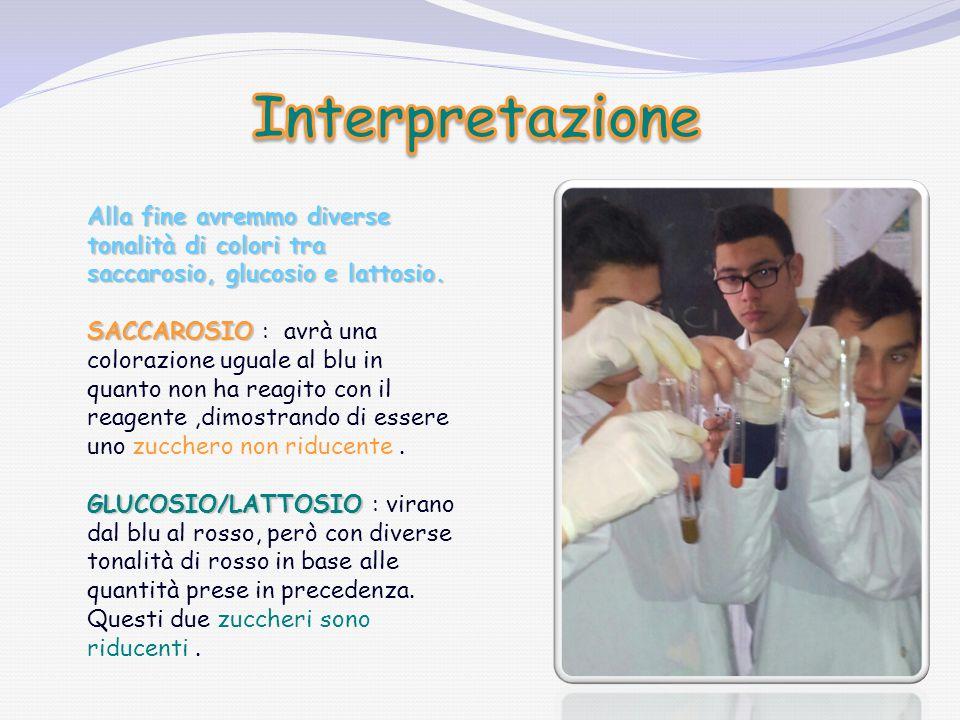 Interpretazione Alla fine avremmo diverse tonalità di colori tra saccarosio, glucosio e lattosio.