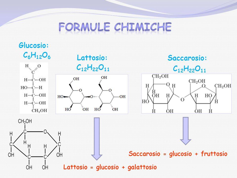 Formule chimiche Saccarosio = glucosio + fruttosio