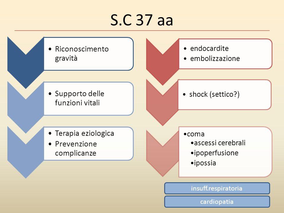 S.C 37 aa endocardite embolizzazione shock (settico ) coma