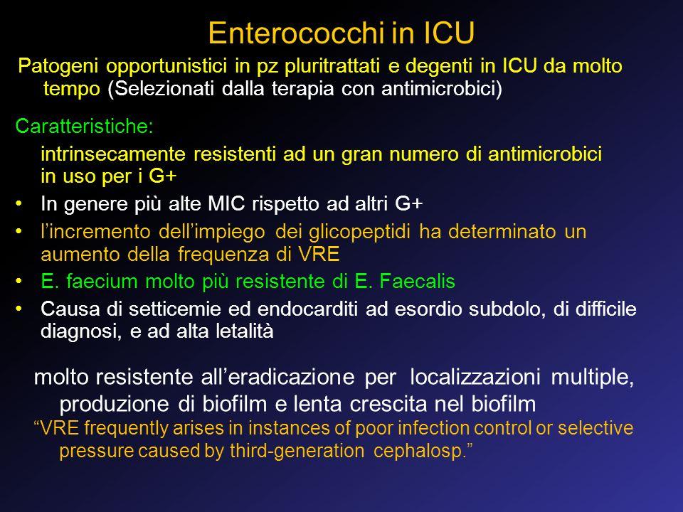 Enterococchi in ICU Patogeni opportunistici in pz pluritrattati e degenti in ICU da molto tempo (Selezionati dalla terapia con antimicrobici)