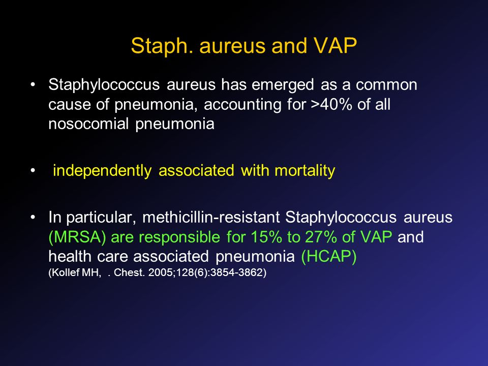 Staph. aureus and VAPStaphylococcus aureus has emerged as a common cause of pneumonia, accounting for >40% of all nosocomial pneumonia.