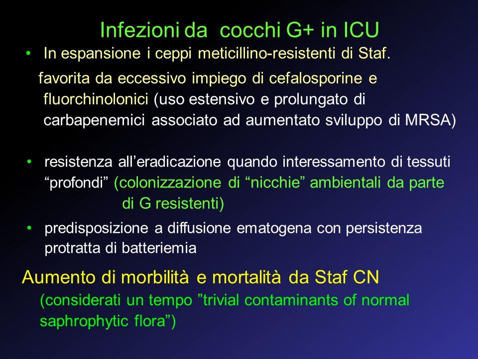 Infezioni da cocchi G+ in ICU