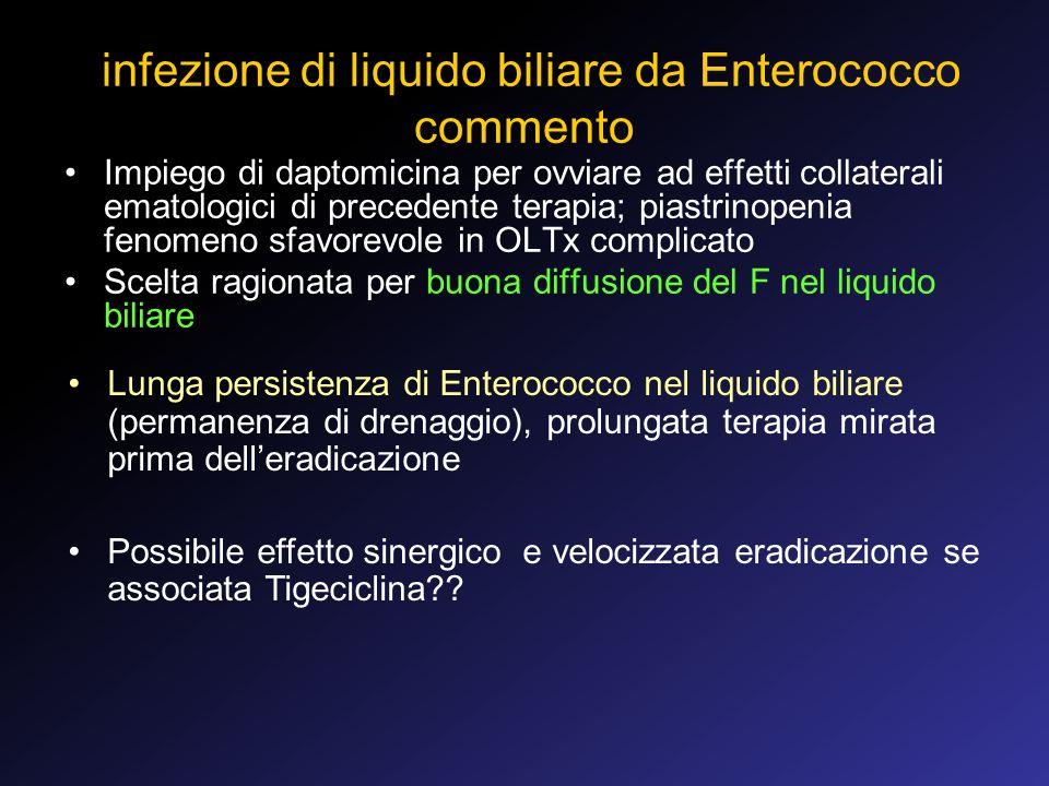 infezione di liquido biliare da Enterococco commento