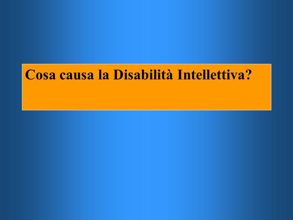 Cosa causa la Disabilità Intellettiva