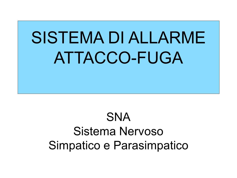 SISTEMA DI ALLARME ATTACCO-FUGA