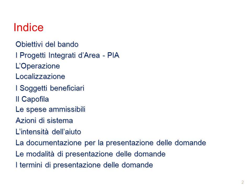 Indice Obiettivi del bando I Progetti Integrati d'Area - PIA