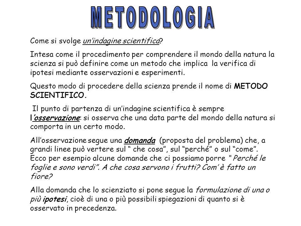 METODOLOGIA Come si svolge un'indagine scientifica