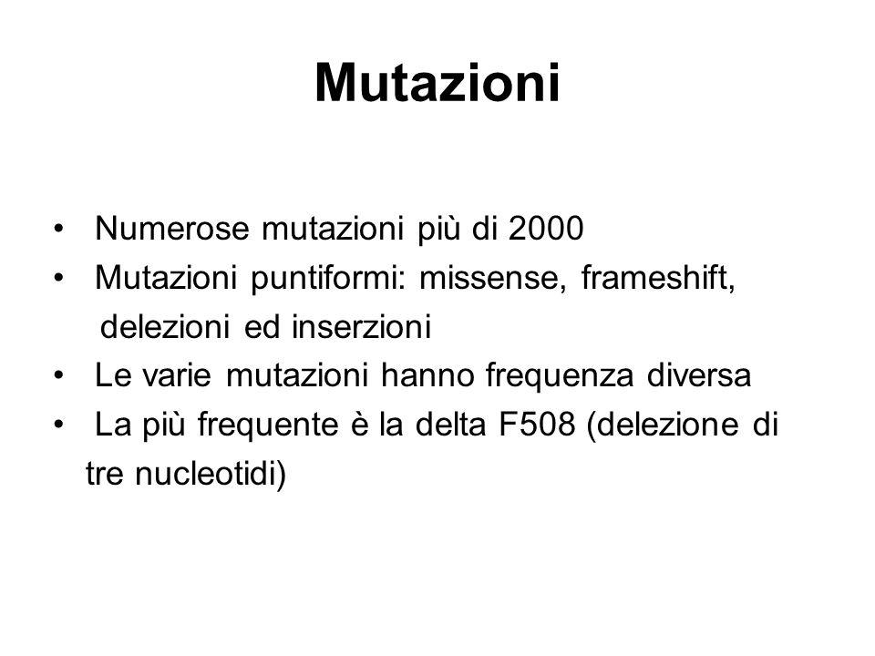 Mutazioni Numerose mutazioni più di 2000