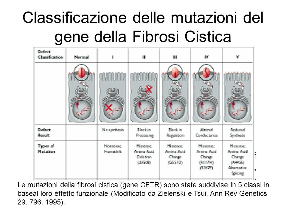Classificazione delle mutazioni del gene della Fibrosi Cistica