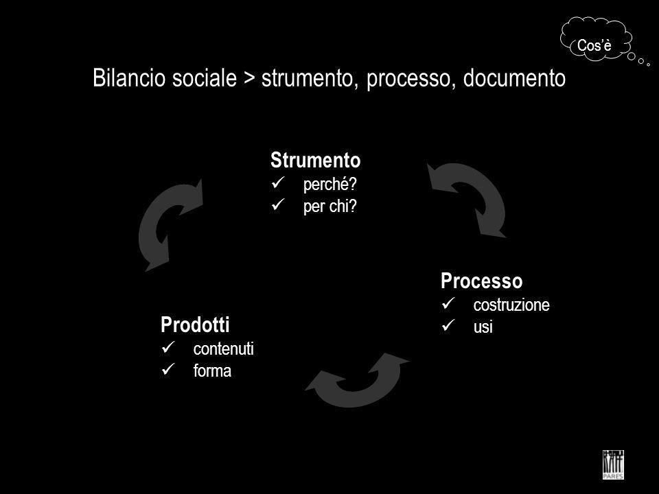 Bilancio sociale > strumento, processo, documento