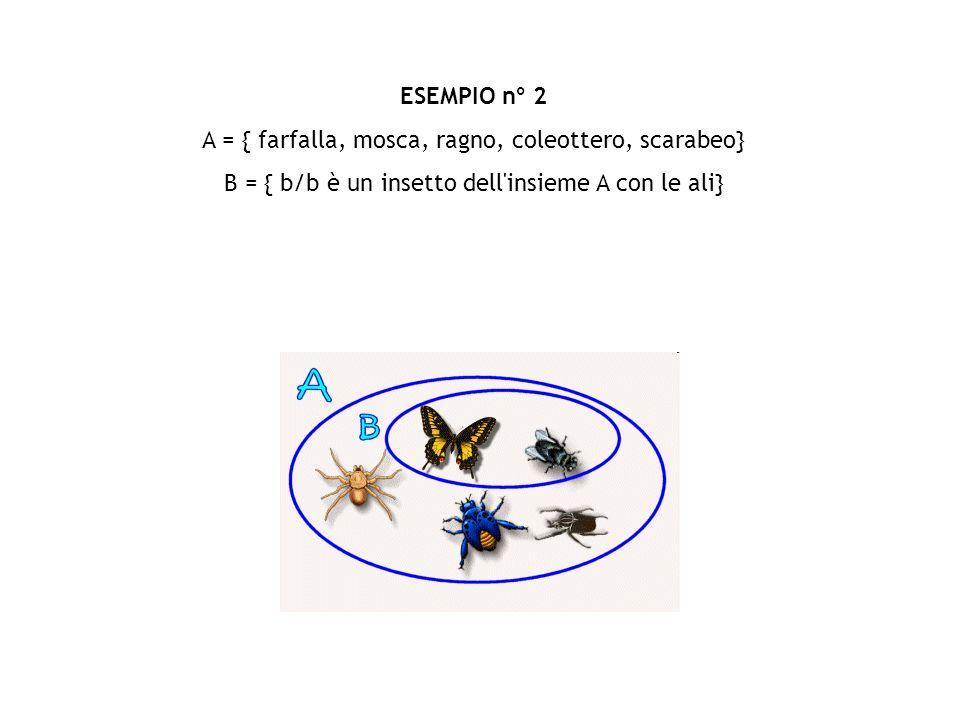 ESEMPIO n° 2 A = { farfalla, mosca, ragno, coleottero, scarabeo} B = { b/b è un insetto dell insieme A con le ali}