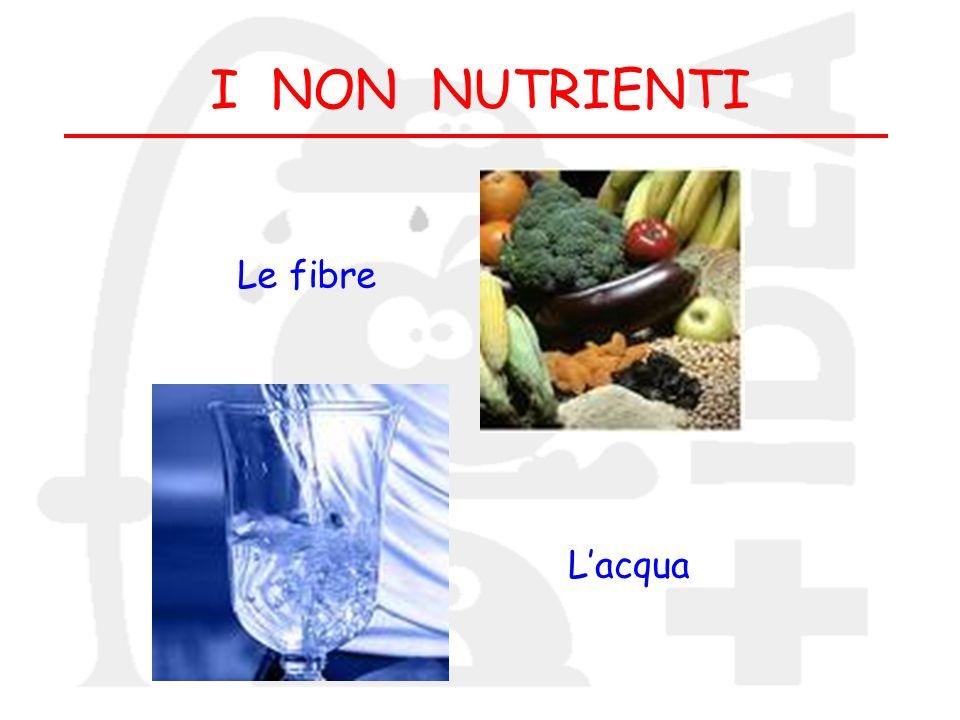 I NON NUTRIENTI Le fibre L'acqua