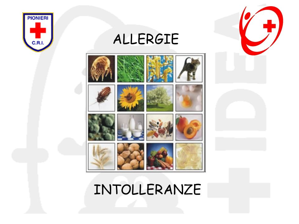 ALLERGIE INTOLLERANZE 39