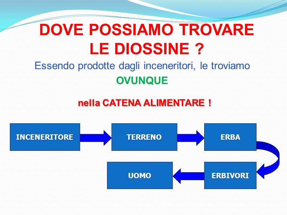 DOVE POSSIAMO TROVARE LE DIOSSINE