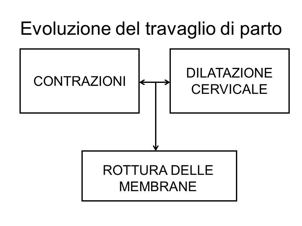 Evoluzione del travaglio di parto