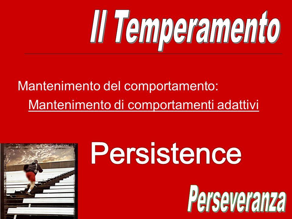 Persistence Il Temperamento Perseveranza