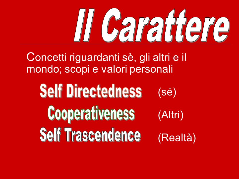 Il Carattere Concetti riguardanti sè, gli altri e il mondo; scopi e valori personali. (sé) (Altri)