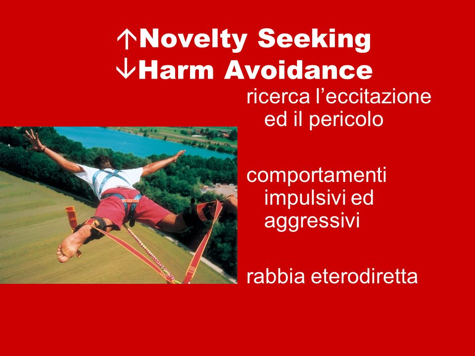 Novelty Seeking Harm Avoidance
