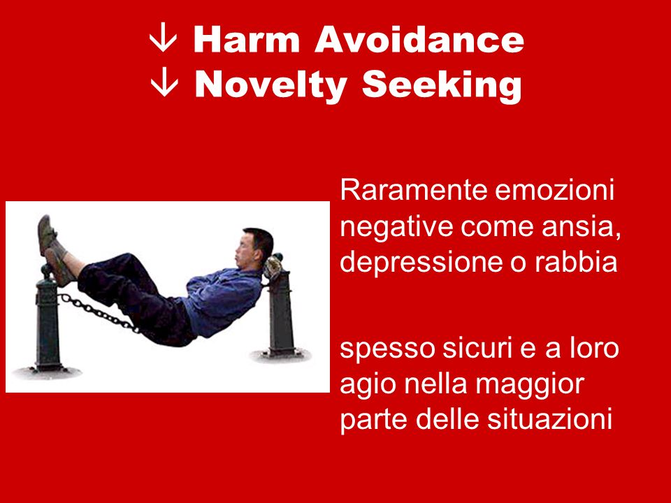  Harm Avoidance  Novelty Seeking