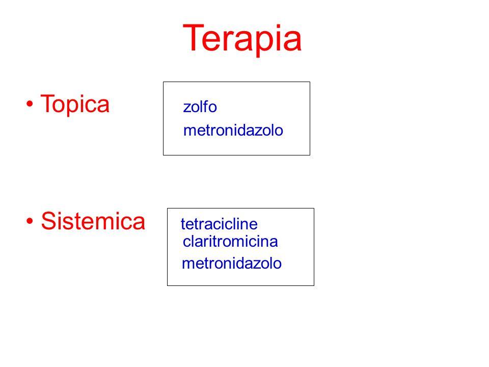 Terapia Topica zolfo metronidazolo Sistemica tetracicline