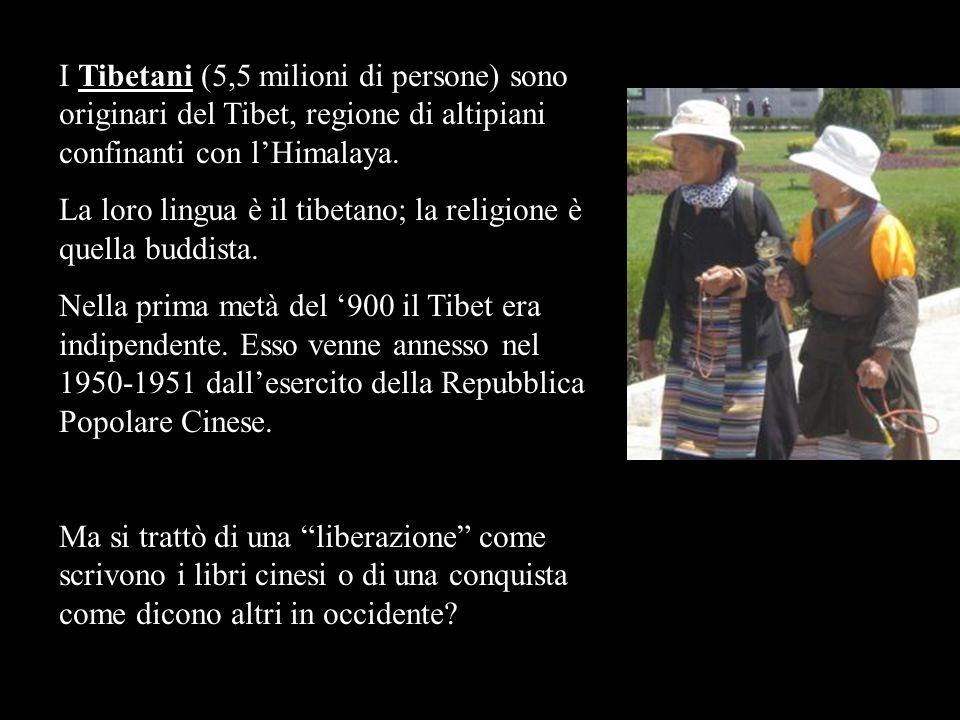 I Tibetani (5,5 milioni di persone) sono originari del Tibet, regione di altipiani confinanti con l'Himalaya.